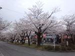 image/2013-04-03T11:36:06-1.jpg